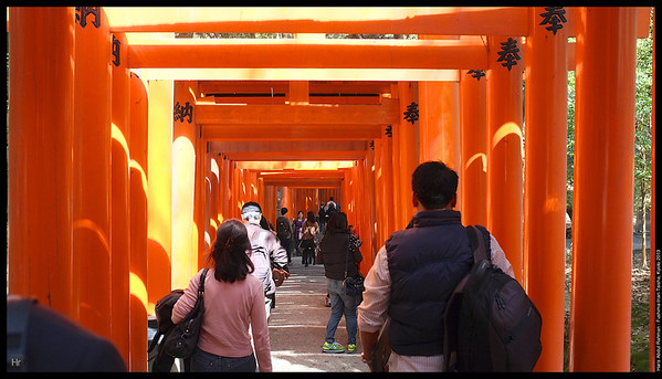 The torii lining the path are gift from local businesses for prosperity  Fushima-Inari Taisha 5th April 2013 Kyoto, Japan