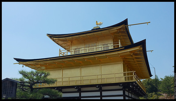 Kinkaku-Ji, The Golden Pavilion 5th April 2013 Kyoto, Japan
