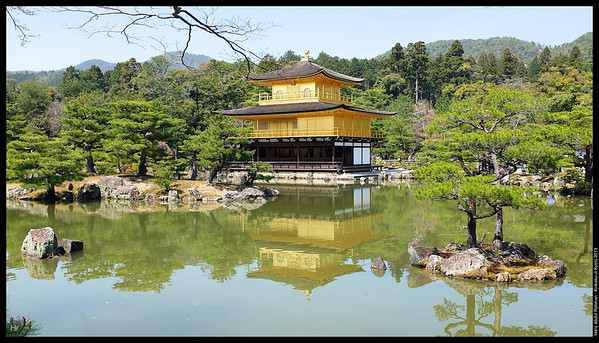 Breathtaking  Kinkaku-Ji, The Golden Pavilion 5th April 2013 Kyoto, Japan
