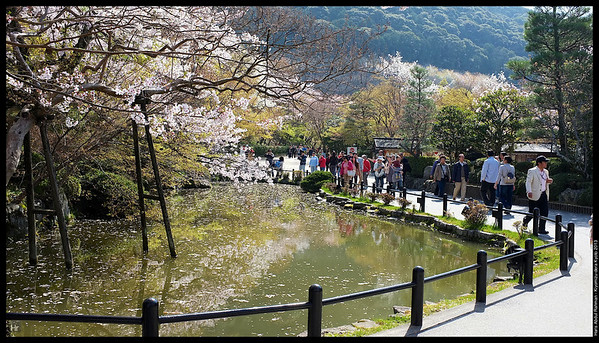 Kiyomizu-dera 5th April 2013 Kyoto, Japan