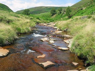 Derwent Reservoir, Yorkshire Peak District 4  The stream is nice an cool.