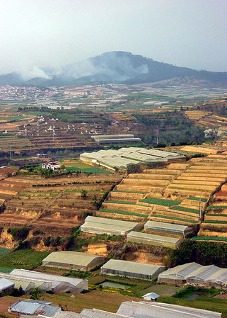 Controlled burn. Dalat, Vietnam. January 14, 2004.