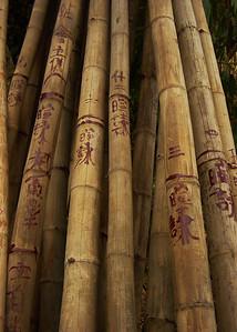 Bamboo Graffiti. Perfume Pagoda, Vietnam. December 31, 2004.