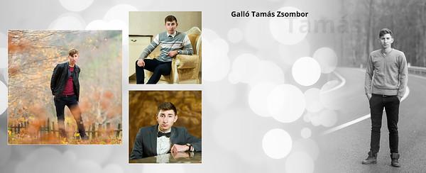 13-Galló Tamás Zsombor-Da