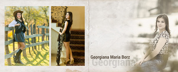 03-Borz Georgiana-Da