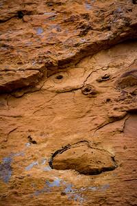 Lichen and Red Rock Art
