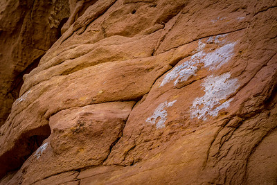 Art Inspired by Lichen covered rock