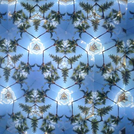 Palm lattice