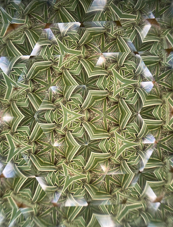 Organic origami