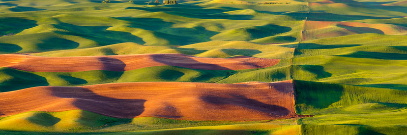 Palouse Waves Panorama