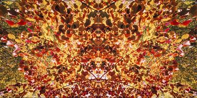 Leaf Mosaic Mirror