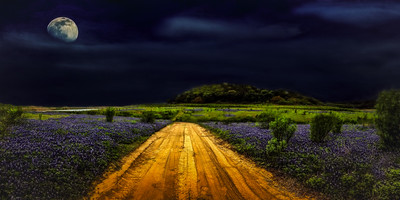 Texas Blue Moon