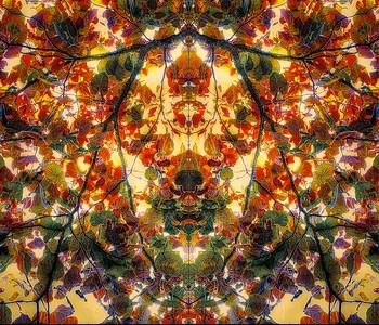 Leaf Mosaic Face