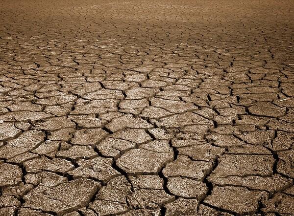 Mud Flat