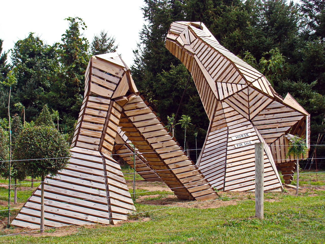 Wooden Horse for Sale