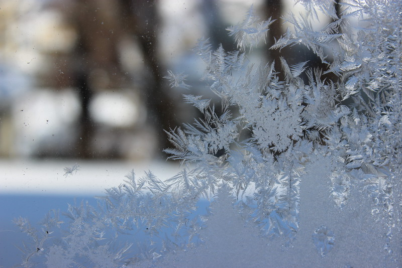 Ice Crystals on the Window