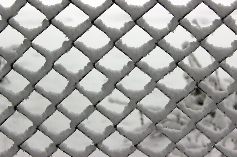 Chain Link Fence in Winter