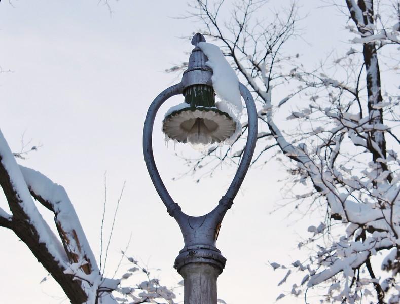 Harp Streetlight in Winter