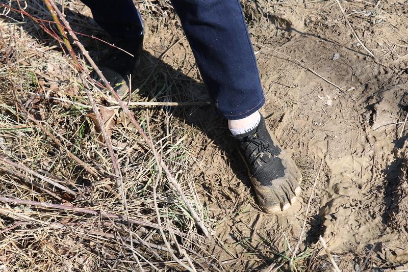 Muddy Toes