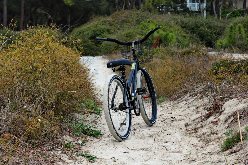 Bike Path Home