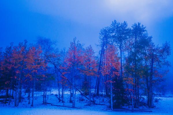 Autumnal Inaguration