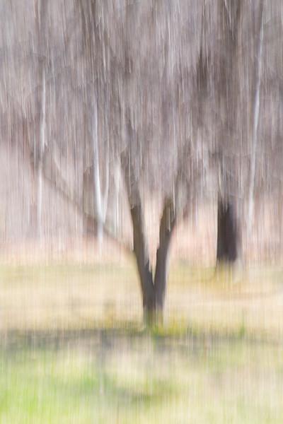 Winter impressionist Portrait