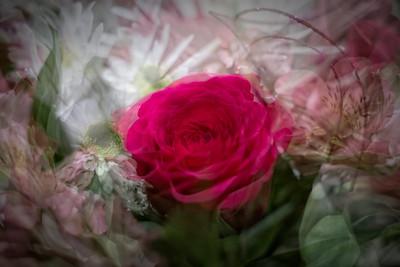 Valentine's Flowers (Wife)