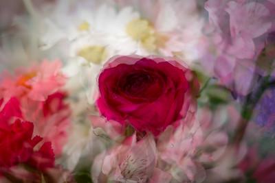 Valentine's Flowers (Daughter)
