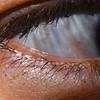 <b>Human Eyelashes</b> Eyelashes can go through a lot in a single day.