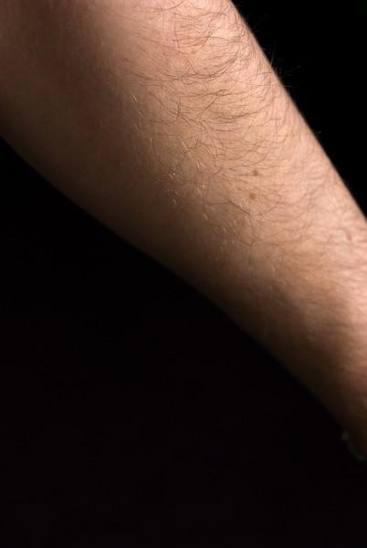 <b>Self Portrait (Forearm)</b> This is my forearm.