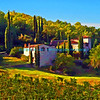 House and grapevines in Tuscany