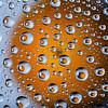 droplets of oranges