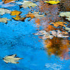 autumn colors in a puddle