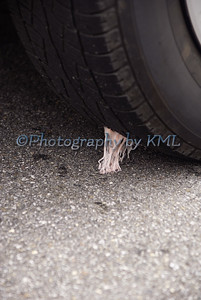 gum stuck under a car tire