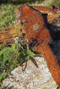 Rusty Anchor Macro