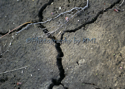 Large Crack in the Dirt