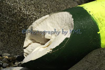 Damaged Buoy