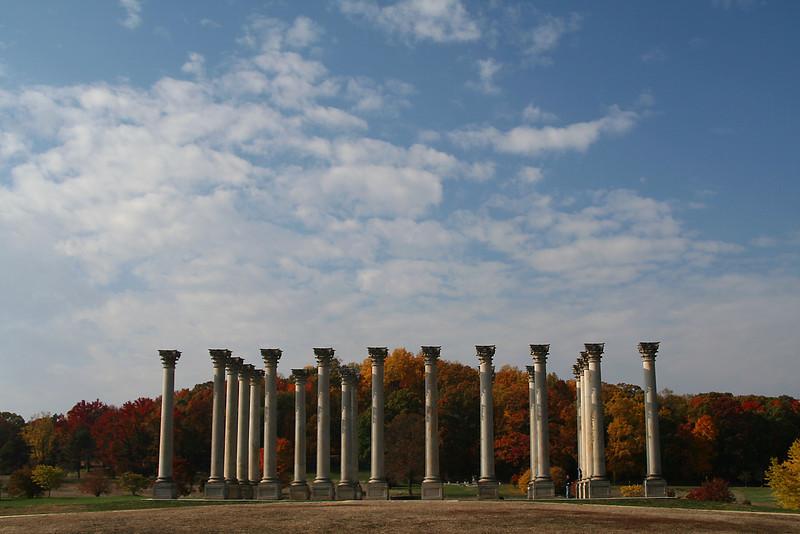 Columns in Autumn