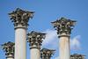 Column Tops