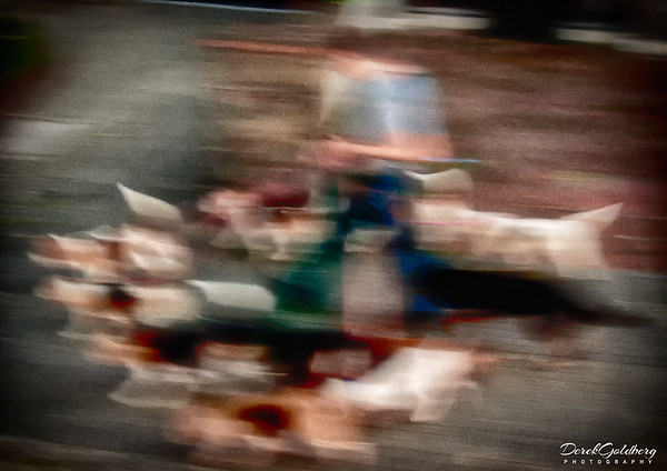 Dog Walker Abstract - Streets of Montevideo, Uruguay
