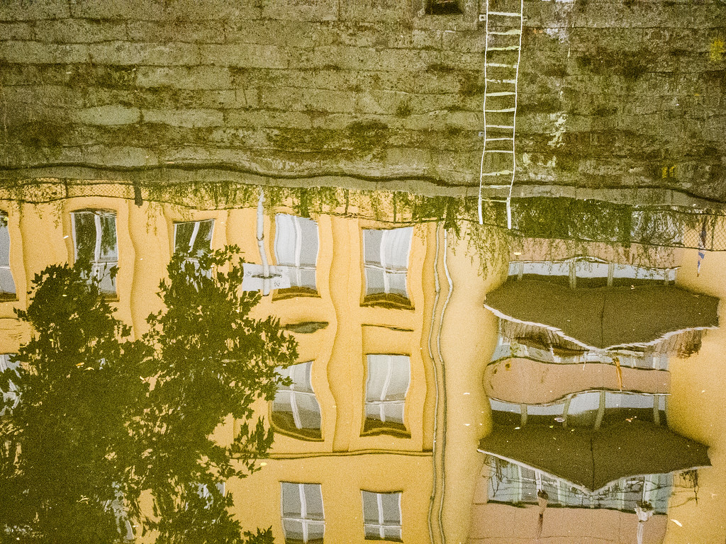 painterly reflection 11