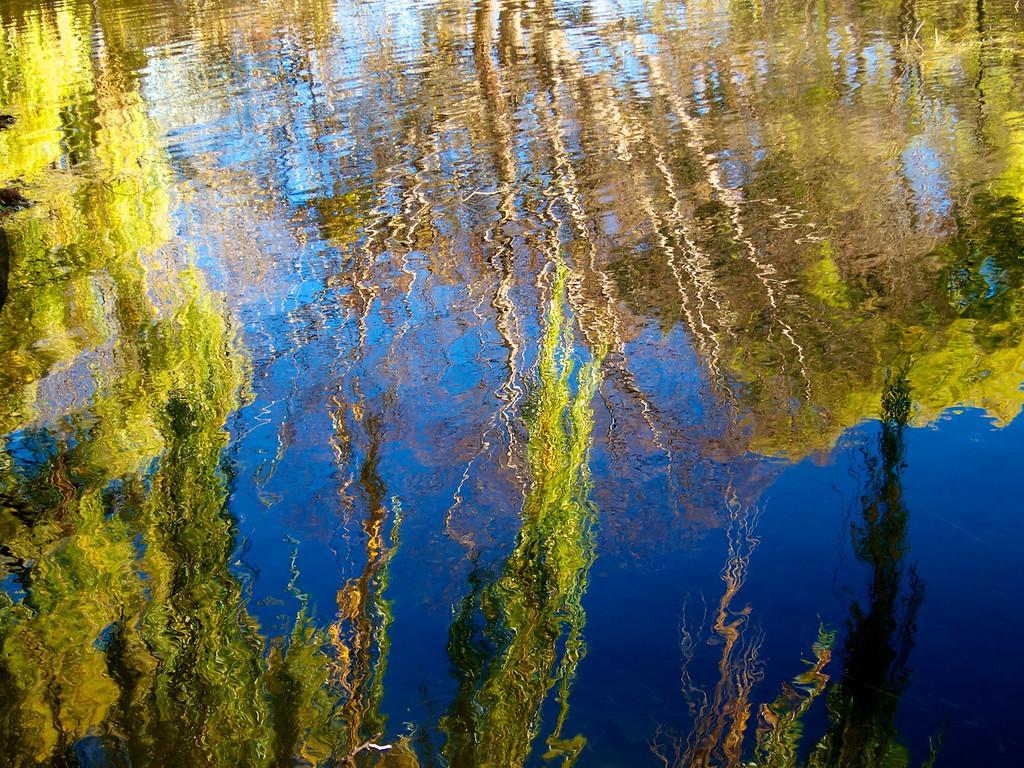 painterly reflection 17