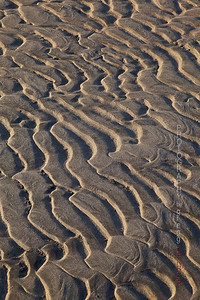 Patterns in the sand. Columbia River sand bar.