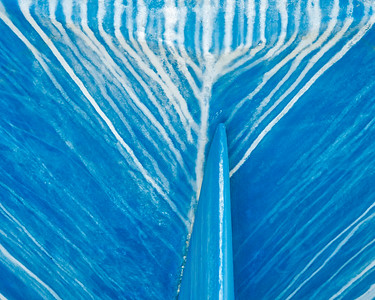 Blue Study 1383