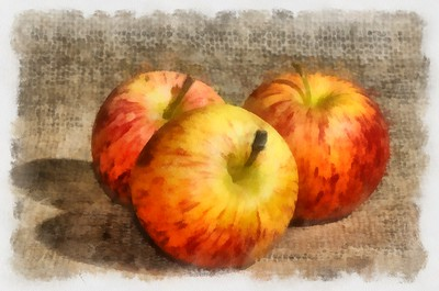 Gravenstein Apple Trio On Burlap_Aquarell