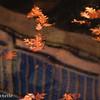 Leafy Reflection