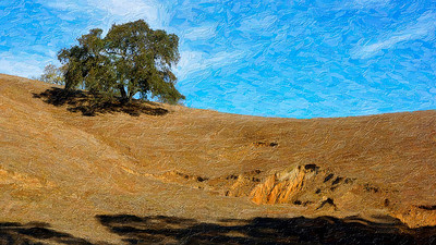 Artistic Tree On A Hill