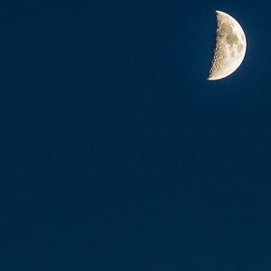 Norfolk Night