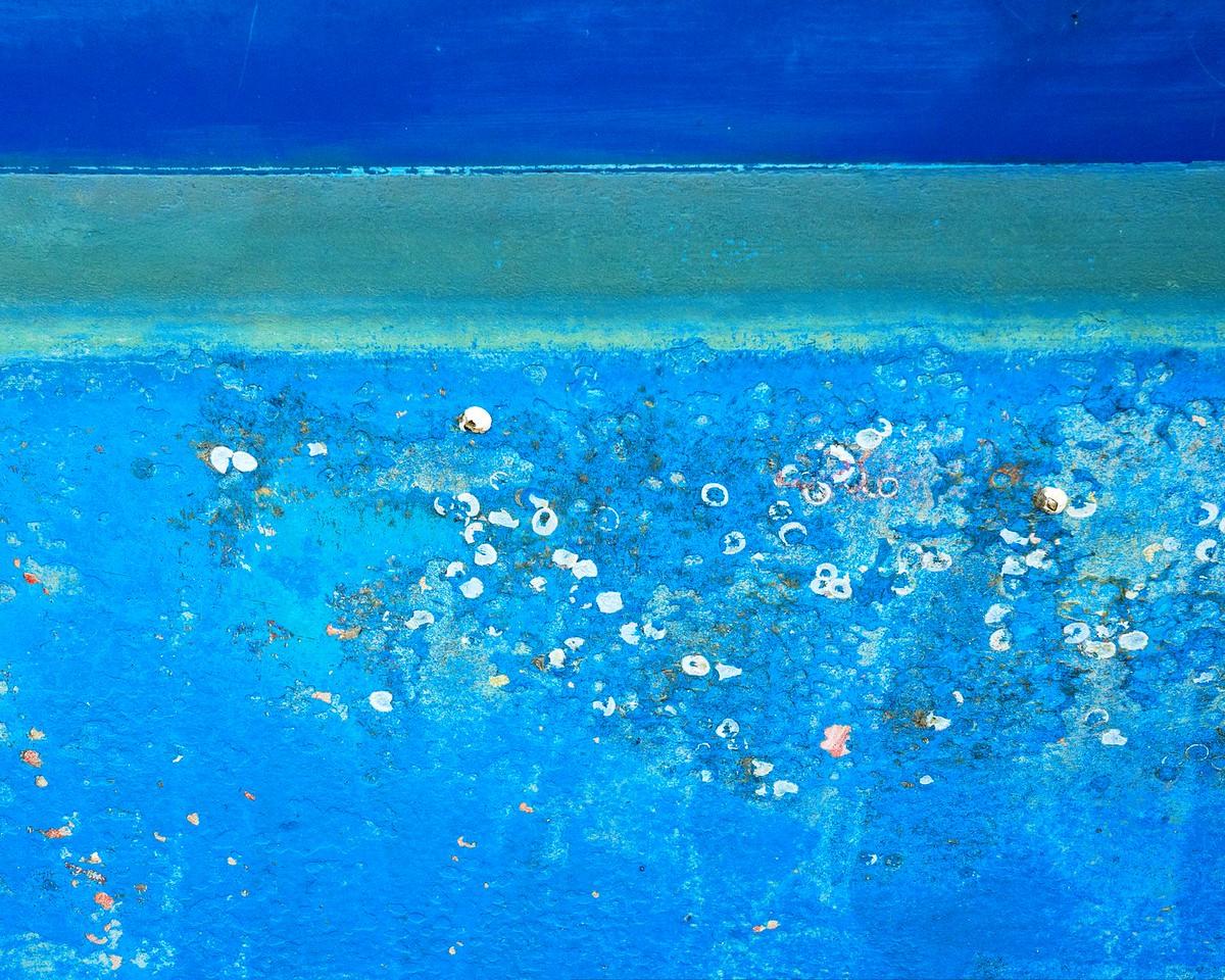 White on Blue 491