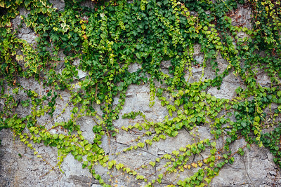 Walls of Positano